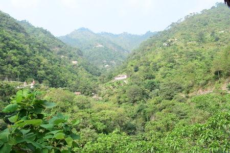 Weekend getaway to Paradise Resort, Old Kasauli