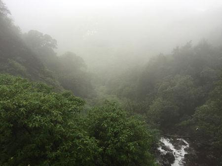 Mahableshwar - A beauty of nature