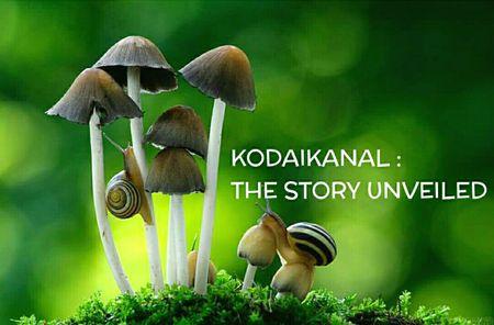 Kodaikanal: The Story Unveiled