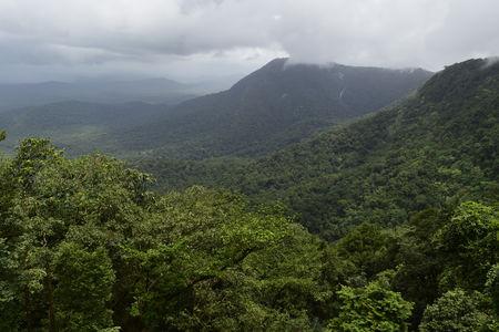 Karnataka: Seeta nadi Nature Camp