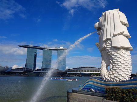 Best places in Singapore in 1 day- Marina Bay, Garden By The Bay, Singapore Flyer and Merlion.