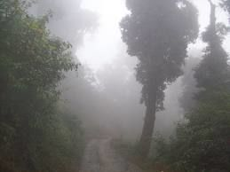 Backpacking through West Bengal