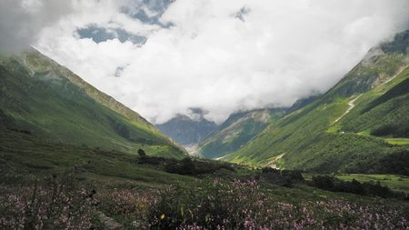 Valley of Flowers, Auli and a taste of heaven!