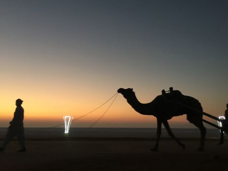 Infinity - The Great Rann of Kutch - A 2 wheeler Traveller's Diary