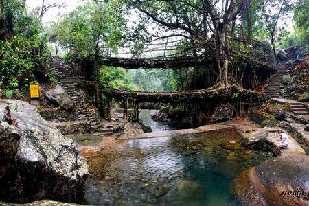 A 7000 stair trek to Nongriat's Living Root Bridge