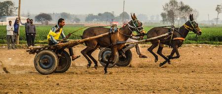 Kila Raipur Sports Festival – A Visual Treat of Rural Punjab