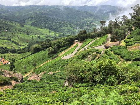 Have you heard about the Bear Mountains in the Nilgiris?