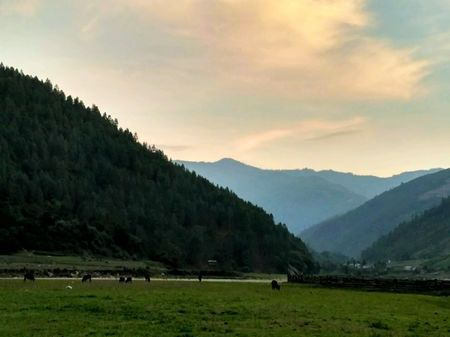 A roadtrip to land of undulating hills - North East India
