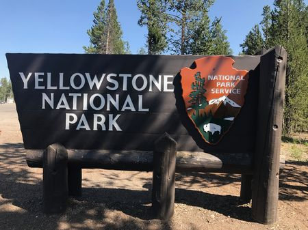 Yellowstone beckons