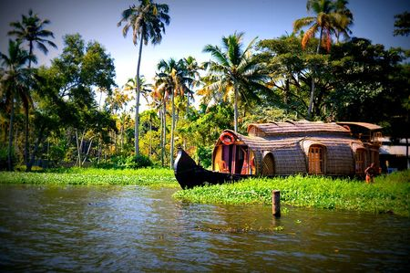 Photo of 6 Days In Kerala - Cochin, Munnar, Thekkady, Alleppey