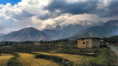 The summer of 2017 in Palampur, Himachal Pradesh