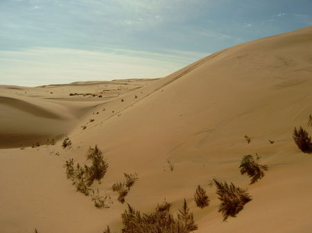 Gobi Desert: The Land Where Dinosaurs Once Walked And Genghis Khan Ruled