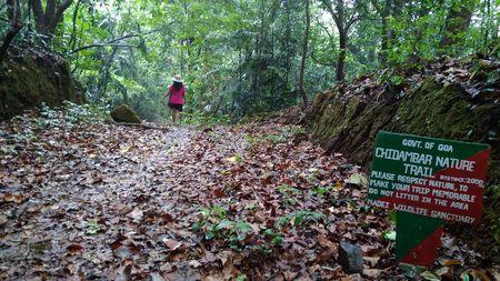 Rainy ride in deep forest to admire nature— Mhadei wild life sanctuary, Goa
