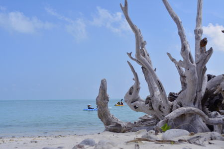 Blue Sea And White Sands  - Lakshadweep