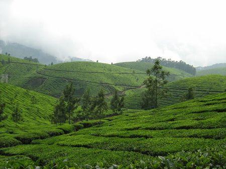 Memoirs of Kerala