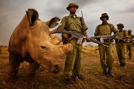 Ol Pejeta: Wildlife for Food