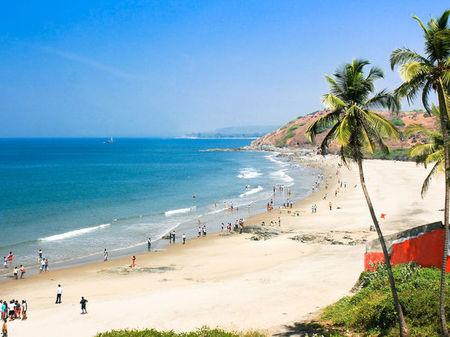 Trip to Goa with flocks....
