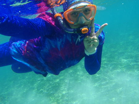 Under the sea: Snorkeling with jelly fish in Lombo