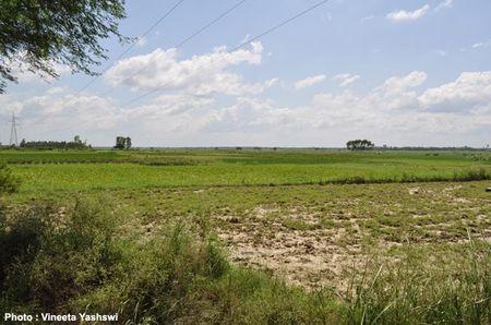 Hinterlands of Lucknow