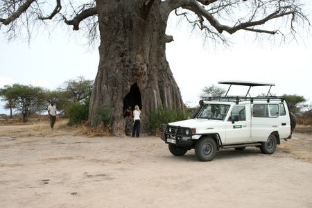 5days / 4nights amazing Tanzania