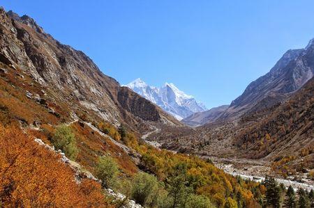 Himalayan Diaries! Gangotri-Gaumukh Trekking