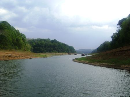 Venturing through the Serenity in Periyar Wildlife Reserve, Kerala