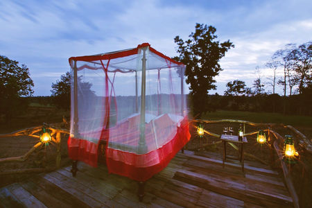 Sleep under the stars in the middle of the jungle at this luxury tent resort in Pench