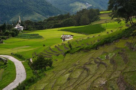Arunachal Pradesh: Your Ultimate Guide To 10 Days In India's Least Explored State