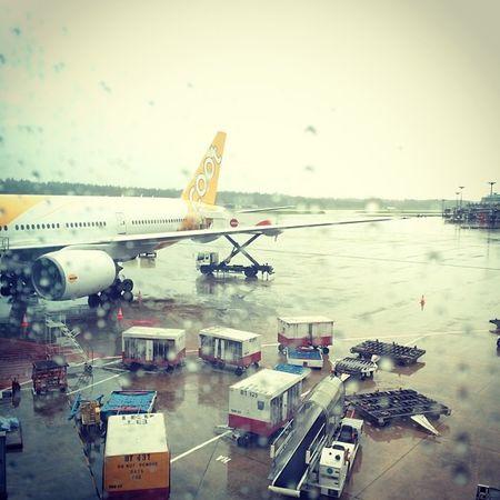 Alone to Seoul