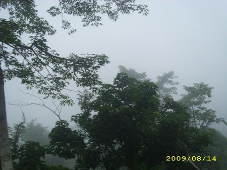 A Misty Trip: Through Dharamshala, Palampur & Kang