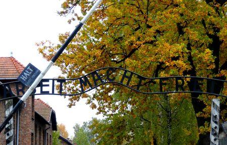 When History Breaks Your Heart : Auschwitz-Birkenau