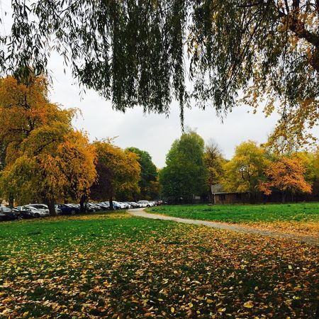 I Found Love In A Hopeless Place : Krakow, Poland (Part 2)