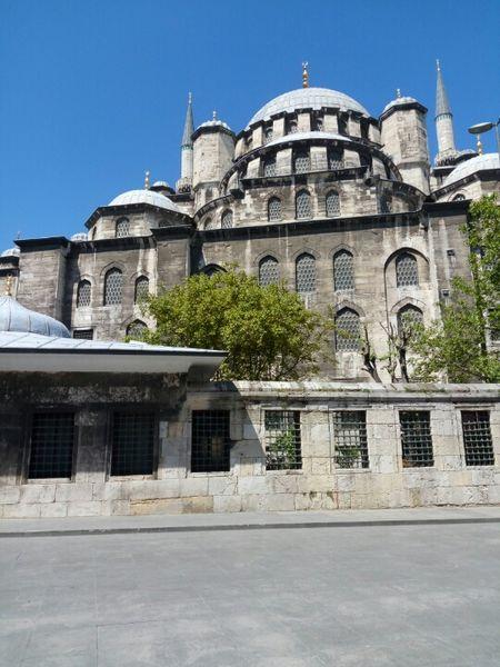 Tantalizing Turkey