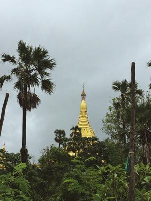 Mumbai's Magical Pagoda - Global Vipassana.