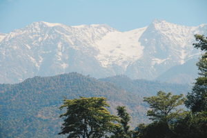 7 things to do in Dharamshala: The Land Of Monasteries and Monks - (The Lazy Diva)