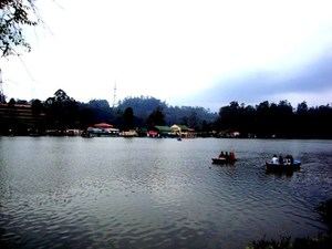 Our short trip to Kodaikanal: Travel Review