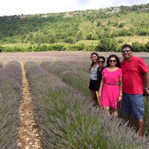 Chasing lavender in Provence