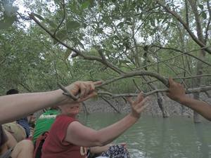 The Sundarbans 1/undefined by Tripoto