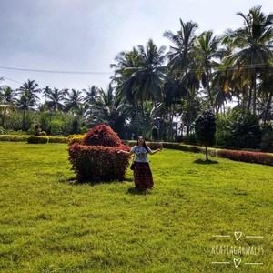 Things To Do In Mysore   Brindavan Gardens   Trekking   Ooty