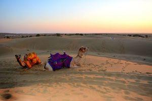 Jaisalmer - the golden Rajasthan.