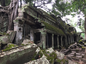 Temples of Angkor 3- Ta Prohm