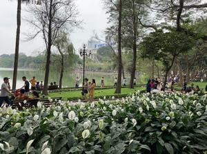 Charming Hanoi - Travel Blog