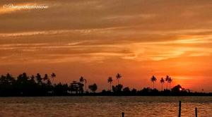 Vintage Dreams in Alleppey