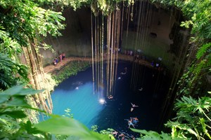 The Magical Cenotes of the Yucatan - You Have To See Them All, But Especially These Two...