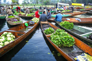 The Ultimate Revelation of Floating Markets in India