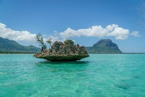 Mauritius in mind? Here's a detailed and convenient itinerary for a 7-day trip to Mauritius
