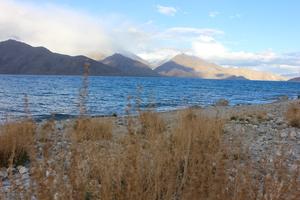 The Ladakh Series | An Impromptu Detour to the Pangong Tso