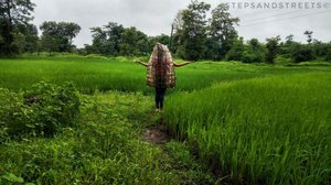 Monsoon Musings in 24 Photos : A Glimpse of My Rain Journey