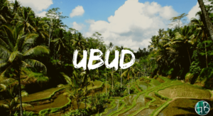 Explore the uplands of Bali in Ubud | GarimaShares