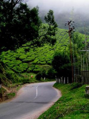 Kerala..through my lens.